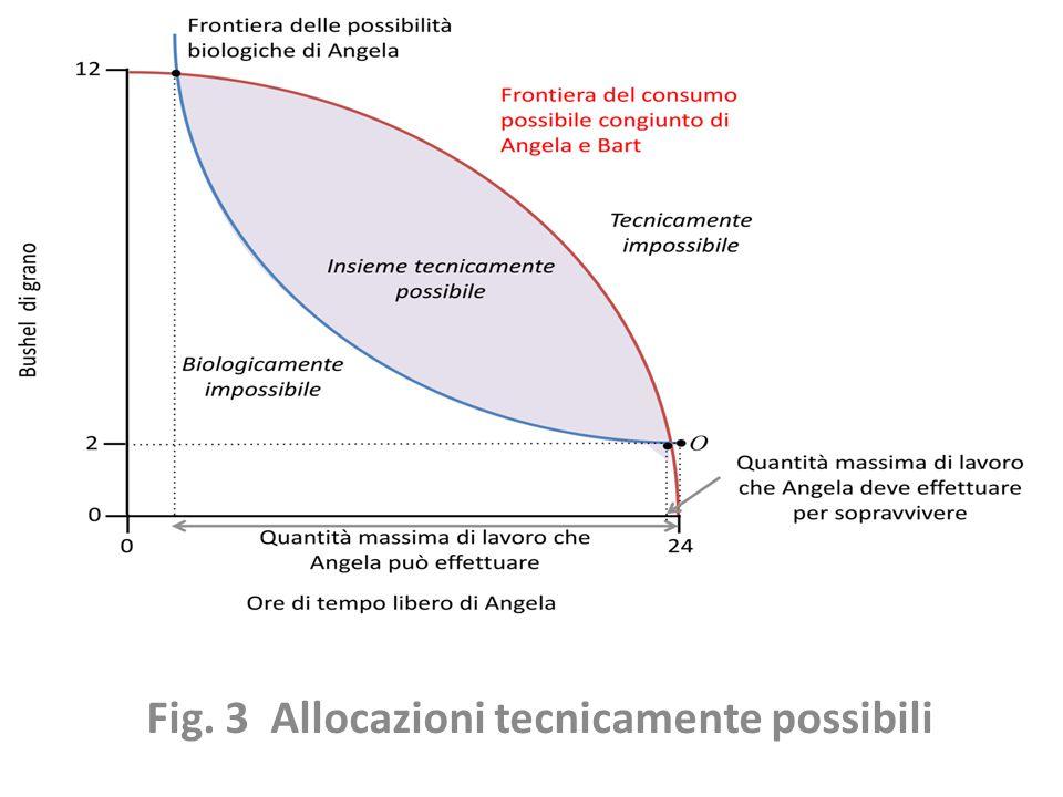 Fig. 3 Allocazioni tecnicamente possibili