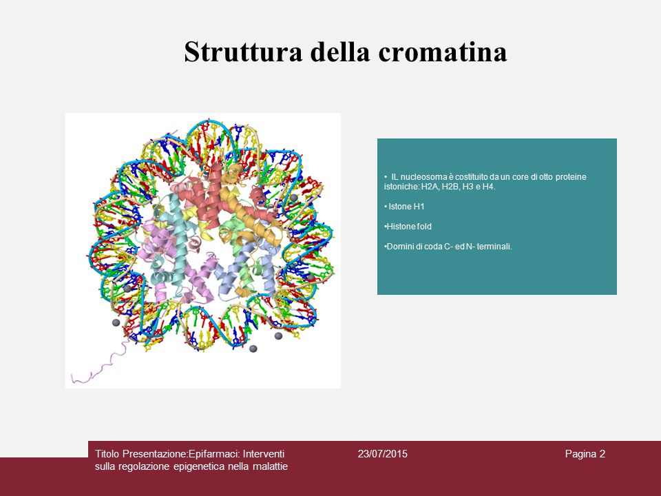 Struttura della cromatina 23/07/2015Titolo Presentazione:Epifarmaci: Interventi sulla regolazione epigenetica nella malattie Pagina 2 IL nucleosoma è