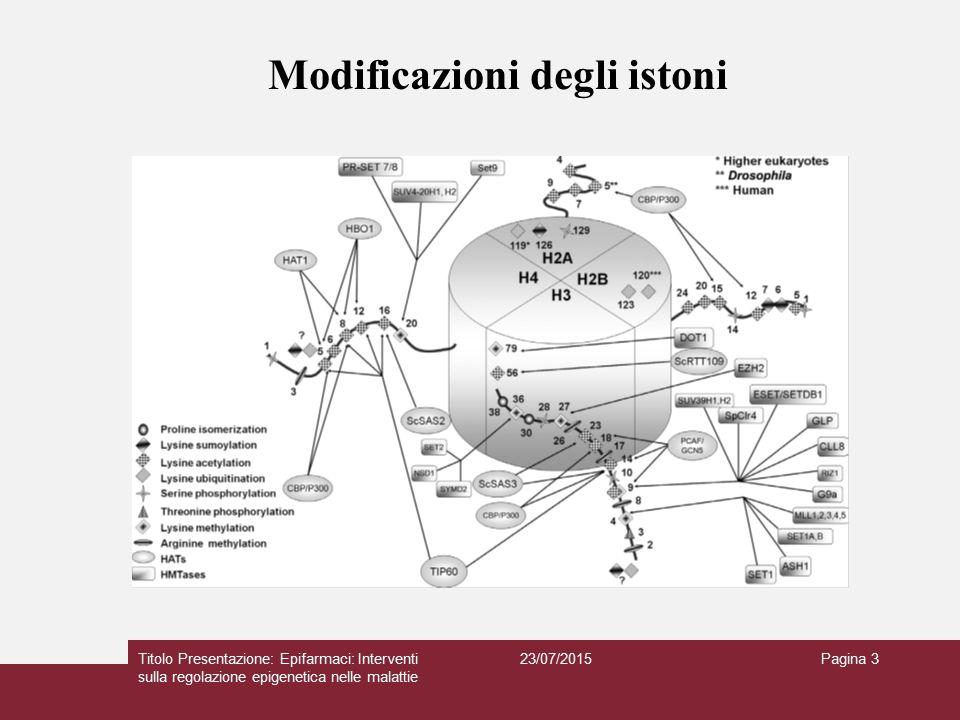 23/07/2015Titolo Presentazione: Epifarmaci: Interventi sulla regolazione epigenetica nelle malattie Pagina 4 SET lisina-specifico Non Set Arginina metiltransferasi Metilazione degli istoni: Enzimi HATs: GNAT, MYST CBP/p300 Enzimi HDACs: HDAC metallo-dipendenti e HDAC NAD+ - dipendenti Acetilazione: