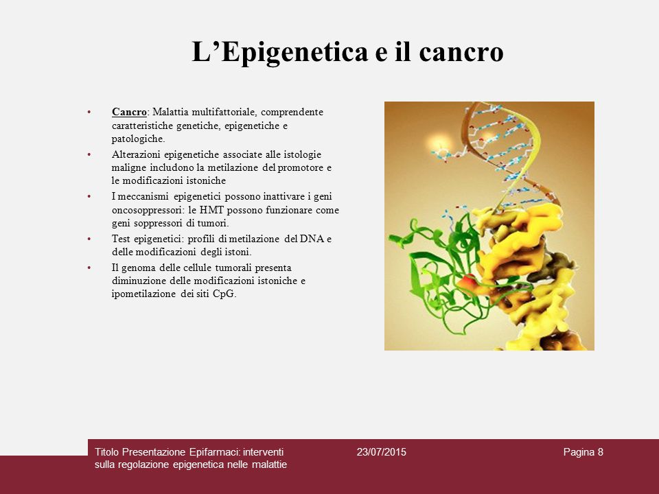 L'Epigenetica e i disturbi cerebrali Malattie neurodegenerative: la malattia di Alzheimer Graduale perdita di cellule del sistema nervoso e progressivo declino cognitivo Fisiopatologia: placche amiloidi extracellulari e grovigli neurofibrillari intracellulari Acetilazione aberrante degli istoni e metilazione del DNA contribuiscono all'Alzheimer.