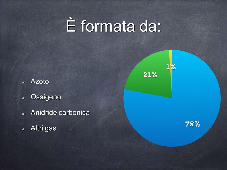 È formata da: AzotoOssigeno Anidride carbonica Altri gas