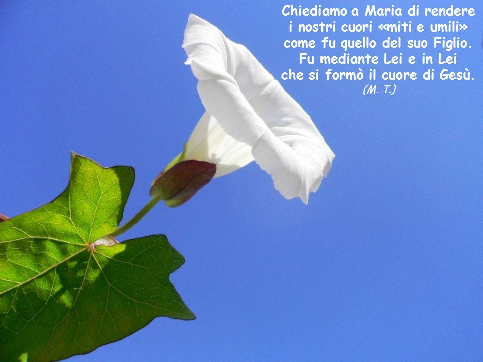 (C. L.) Anche per le donne di oggi solo Maria resta l'unico tipo di donna. (C. L.)
