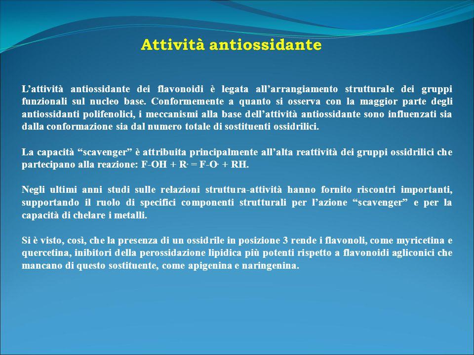 L'attività antiossidante dei flavonoidi è legata all'arrangiamento strutturale dei gruppi funzionali sul nucleo base.