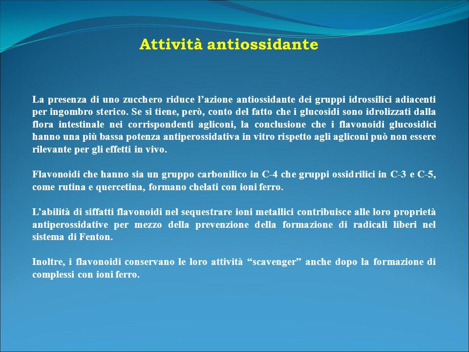 La presenza di uno zucchero riduce l'azione antiossidante dei gruppi idrossilici adiacenti per ingombro sterico.