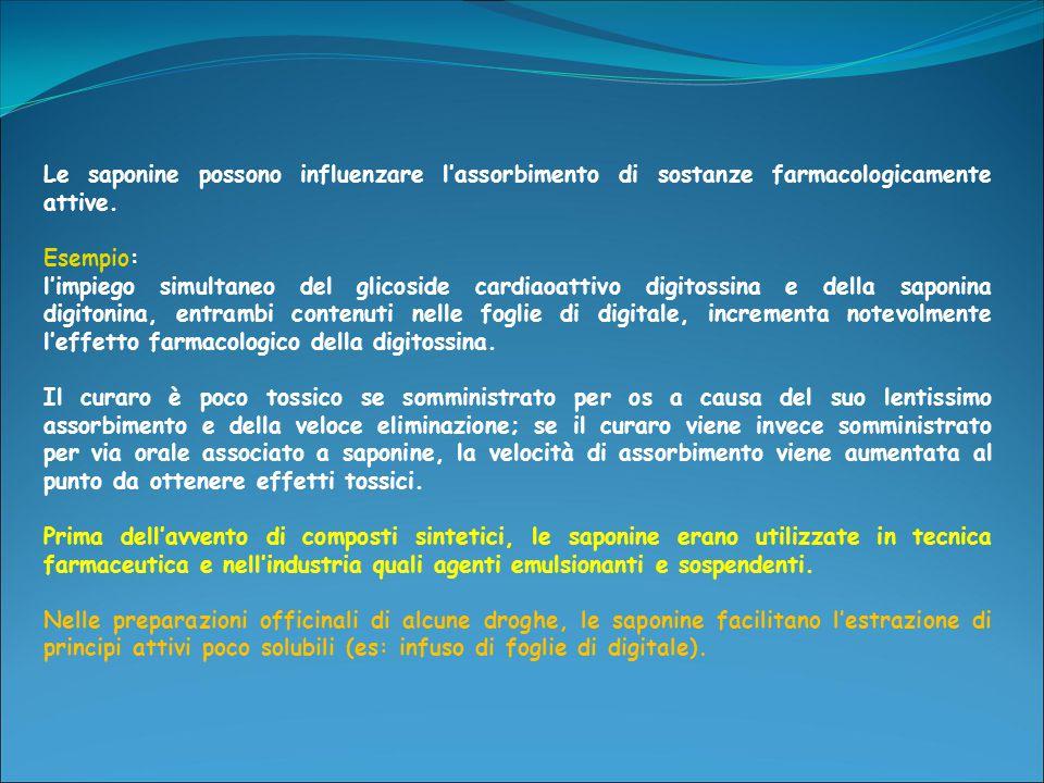 Le saponine possono influenzare l'assorbimento di sostanze farmacologicamente attive.