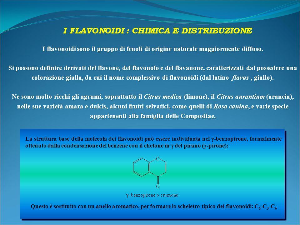 I flavonoidi sono il gruppo di fenoli di origine naturale maggiormente diffuso.