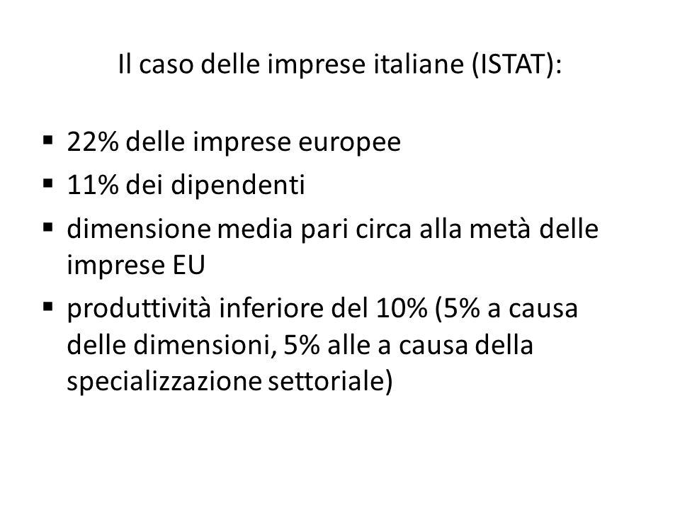 Il caso delle imprese italiane (ISTAT):  22% delle imprese europee  11% dei dipendenti  dimensione media pari circa alla metà delle imprese EU  produttività inferiore del 10% (5% a causa delle dimensioni, 5% alle a causa della specializzazione settoriale)