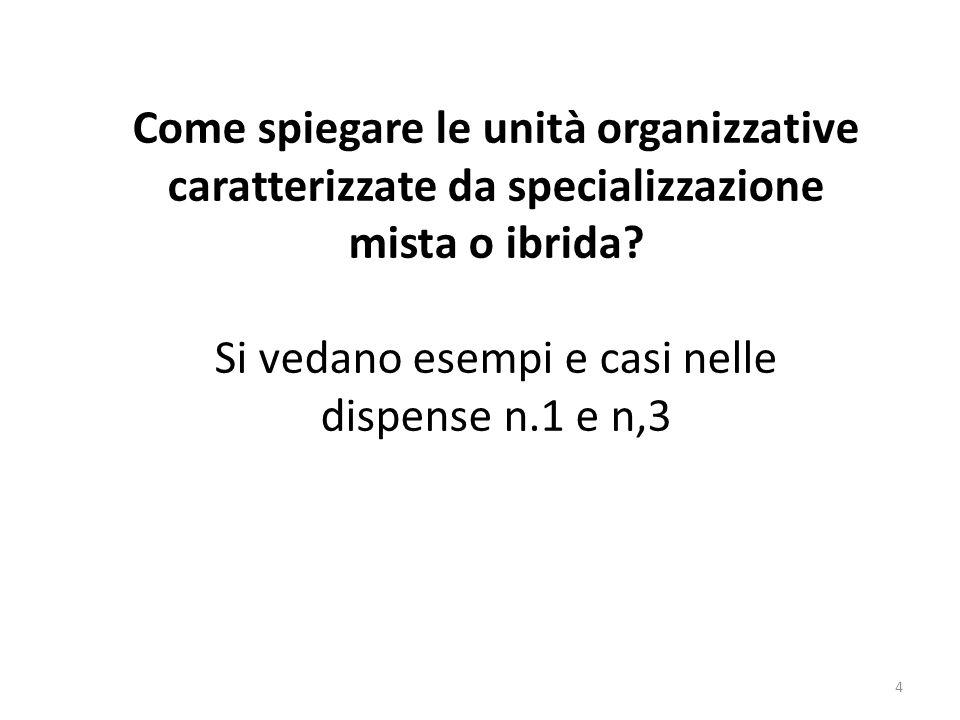 4 Come spiegare le unità organizzative caratterizzate da specializzazione mista o ibrida? Si vedano esempi e casi nelle dispense n.1 e n,3