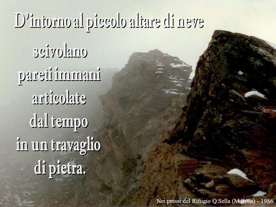 Alpeggio in alta Valtellina - 1999
