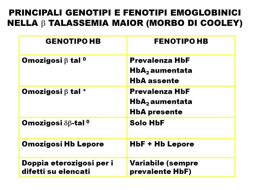 PRINCIPALI GENOTIPI E FENOTIPI EMOGLOBINICI NELLA  TALASSEMIA MAIOR (MORBO DI COOLEY) GENOTIPO HBFENOTIPO HB Omozigosi  tal 0 Prevalenza HbF HbA 2 a