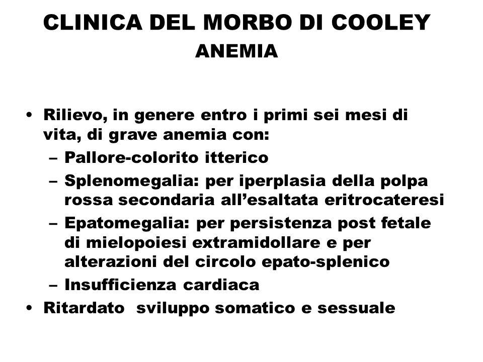 CLINICA DEL MORBO DI COOLEY ANEMIA Rilievo, in genere entro i primi sei mesi di vita, di grave anemia con: –Pallore-colorito itterico –Splenomegalia: