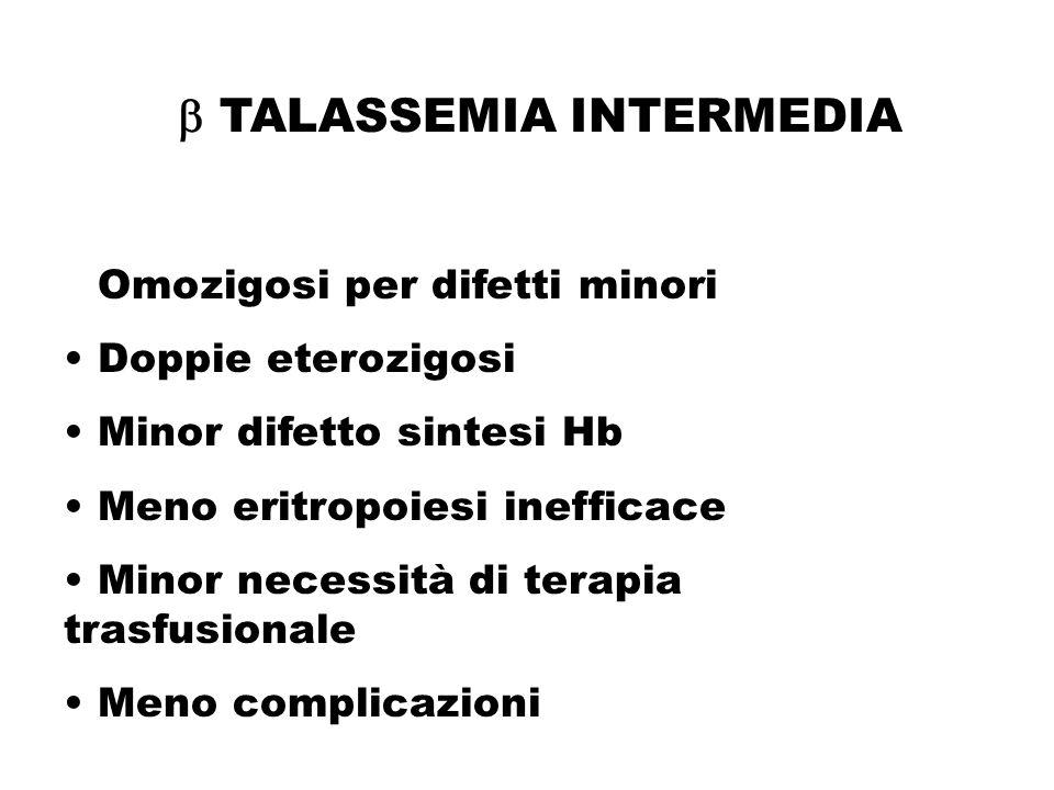  TALASSEMIA INTERMEDIA Omozigosi per difetti minori Doppie eterozigosi Minor difetto sintesi Hb Meno eritropoiesi inefficace Minor necessità di terap