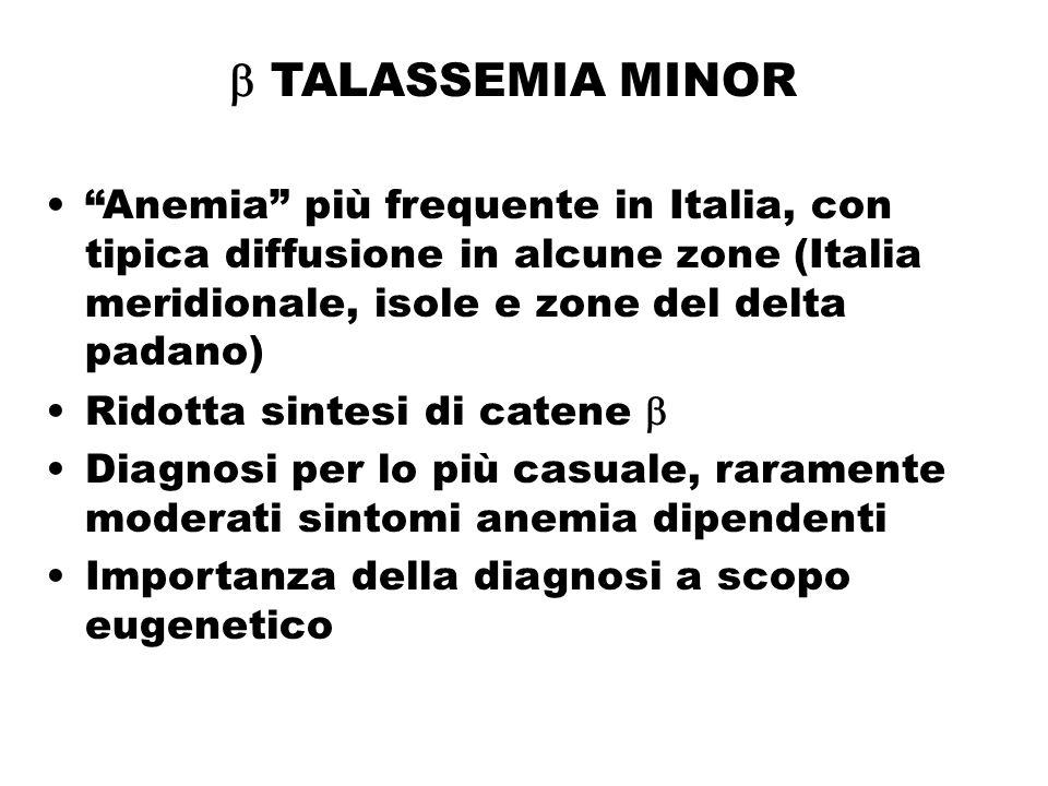 """ TALASSEMIA MINOR """"Anemia"""" più frequente in Italia, con tipica diffusione in alcune zone (Italia meridionale, isole e zone del delta padano) Ridotta"""