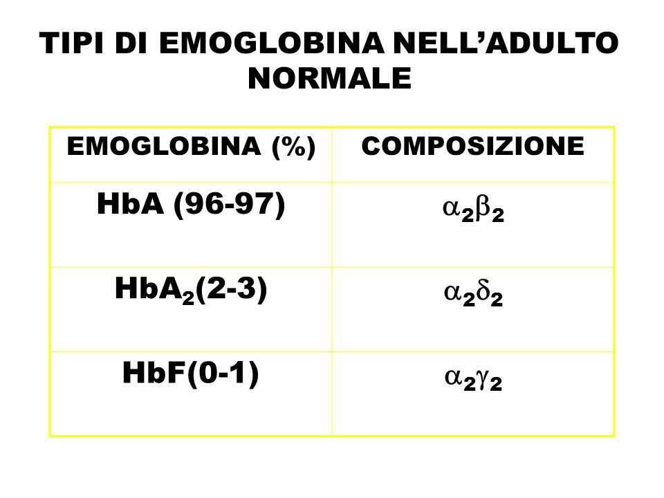 ANEMIA FALCIFORME HbS: sostituzione nell'aminoacido 6 delle catene  acido glutamico valina Le molecole di Hb in condizioni di de- ossigenazione polimerizzano e precipitano nell'eritrocita, deformandolo a forma di falce Sintomi clinici prevalentemente in caso di omozigosi legati a : –Anemia emolitica cronica –Asplenia (infarti splenici) –Fenomeni vaso-occlusivi piccoli e grossi vasi (crisi dolorose, danno d'organo).