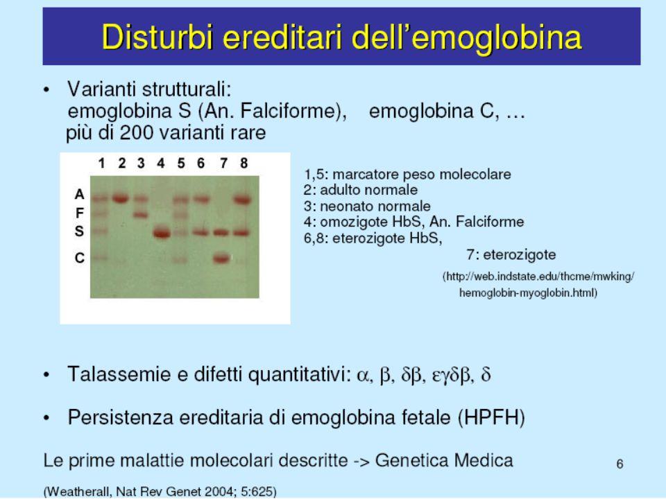 TALASSEMIE (ANEMIA MEDITERRANEA) Difetti genetici della sintesi di una o più catene globiniche, più frequentemente normali Inadeguata produzione di emoglobina Anemia ipocromica-microcitica Non bilanciato accumulo di catene globiniche Esaltata eritropoiesi inefficace ed emolisi