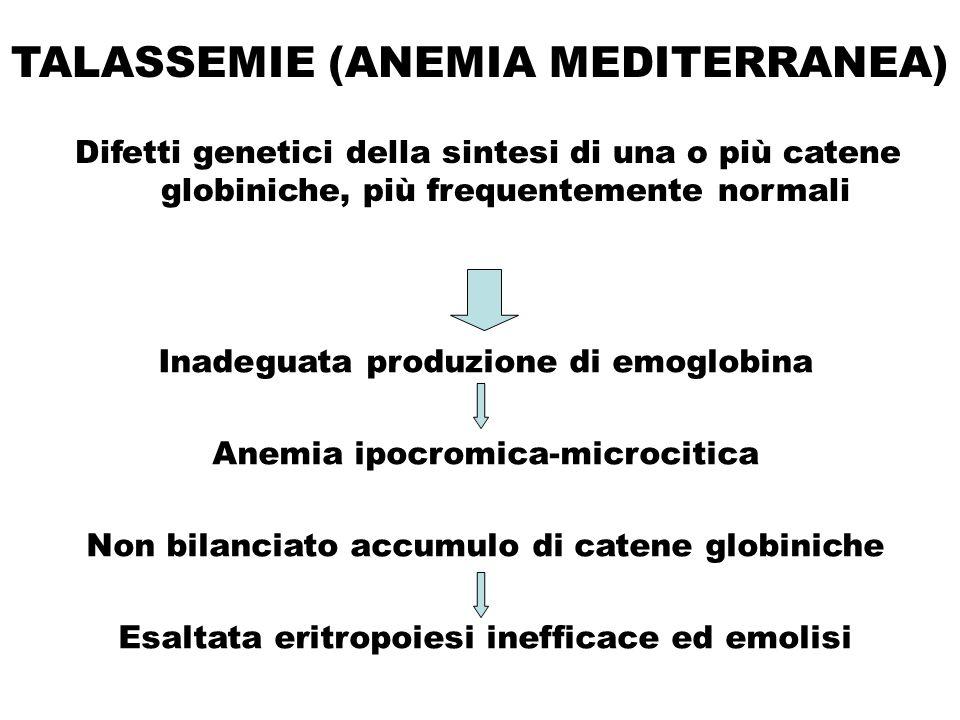 TALASSEMIE (ANEMIA MEDITERRANEA) Difetti genetici della sintesi di una o più catene globiniche, più frequentemente normali Inadeguata produzione di em