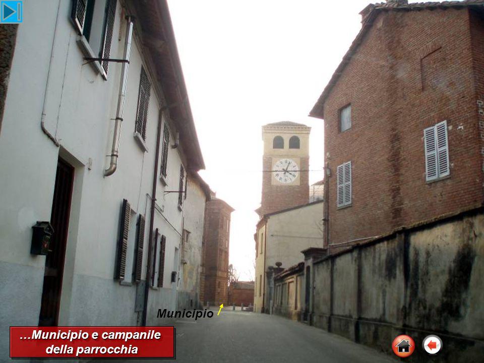 …Municipio e campanile della parrocchia …Municipio e campanile della parrocchia Municipio