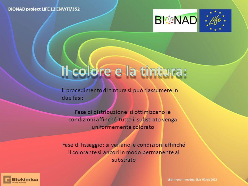 BIONAD project LIFE 12 ENV/IT/352 Il procedimento di tintura si può riassumere in due fasi: Fase di distribuzione: si ottimizzano le condizioni affinc