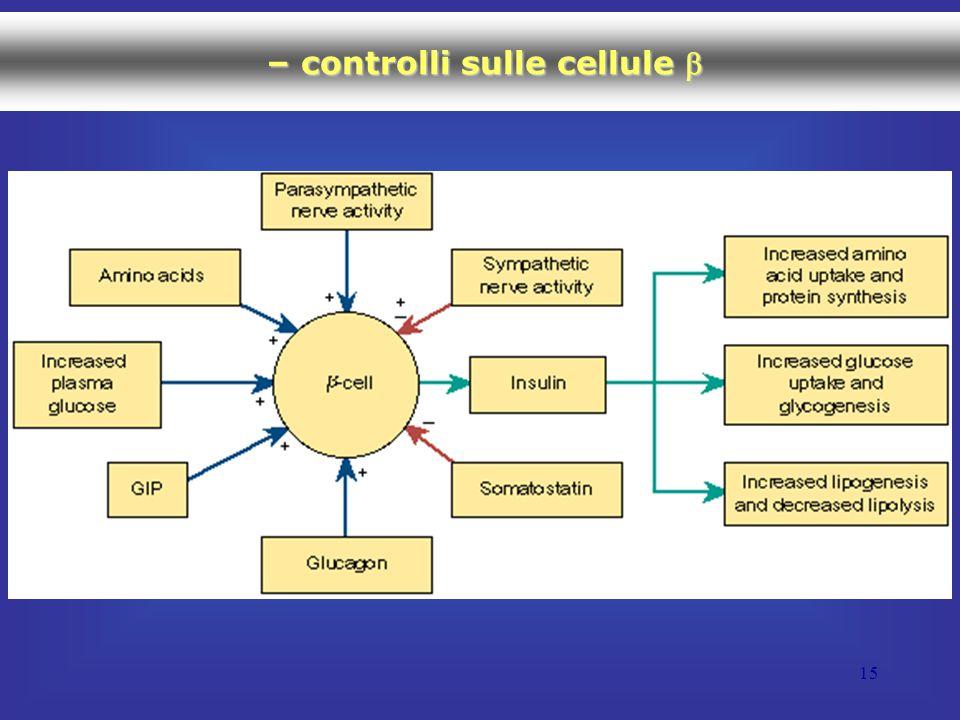 15 – controlli sulle cellule  – controlli sulle cellule 