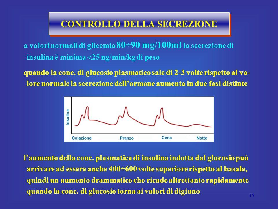 35 CONTROLLO DELLA SECREZIONE a valori normali di glicemia 80÷90 mg/100ml la secrezione di insulina è minima  25 ng/min/kg di peso quando la conc.