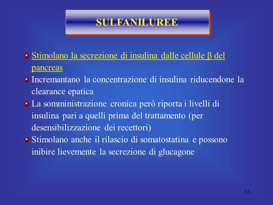 58 SULFANILUREE Stimolano la secrezione di insulina dalle cellule β del pancreas Incremantano la concentrazione di insulina riducendone la clearance epatica La somministrazione cronica però riporta i livelli di insulina pari a quelli prima del trattamento (per desensibilizzazione dei recettori) Stimolano anche il rilascio di somatostatina e possono inibire lievemente la secrezione di glucagone