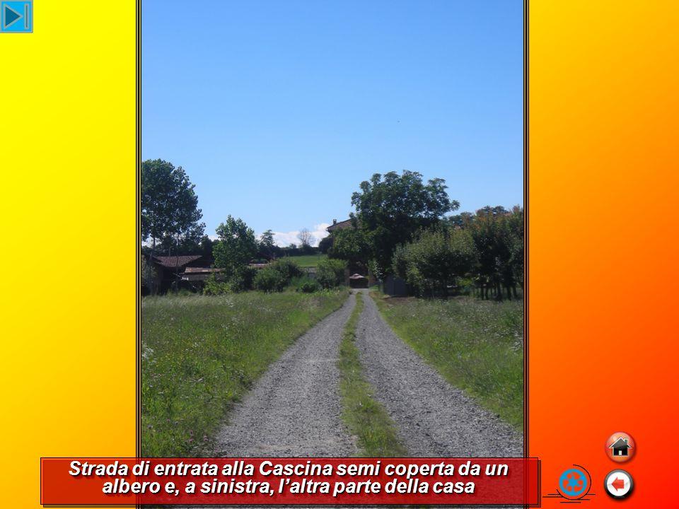 Strada di entrata alla Cascina semi coperta da un albero e, a sinistra, l'altra parte della casa