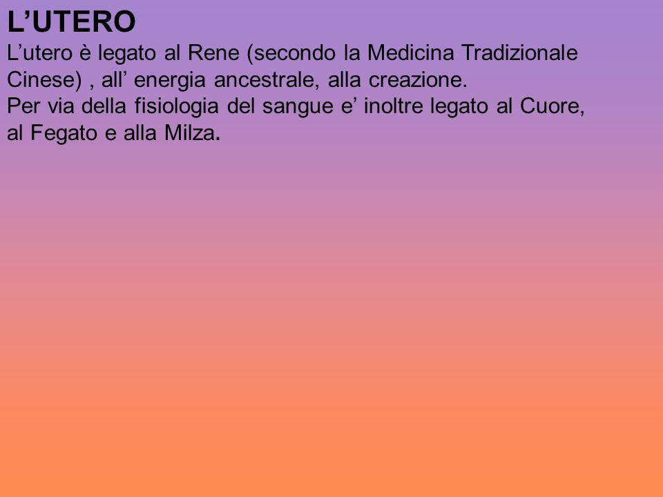 L'UTERO L'utero è legato al Rene (secondo la Medicina Tradizionale Cinese), all' energia ancestrale, alla creazione. Per via della fisiologia del sang