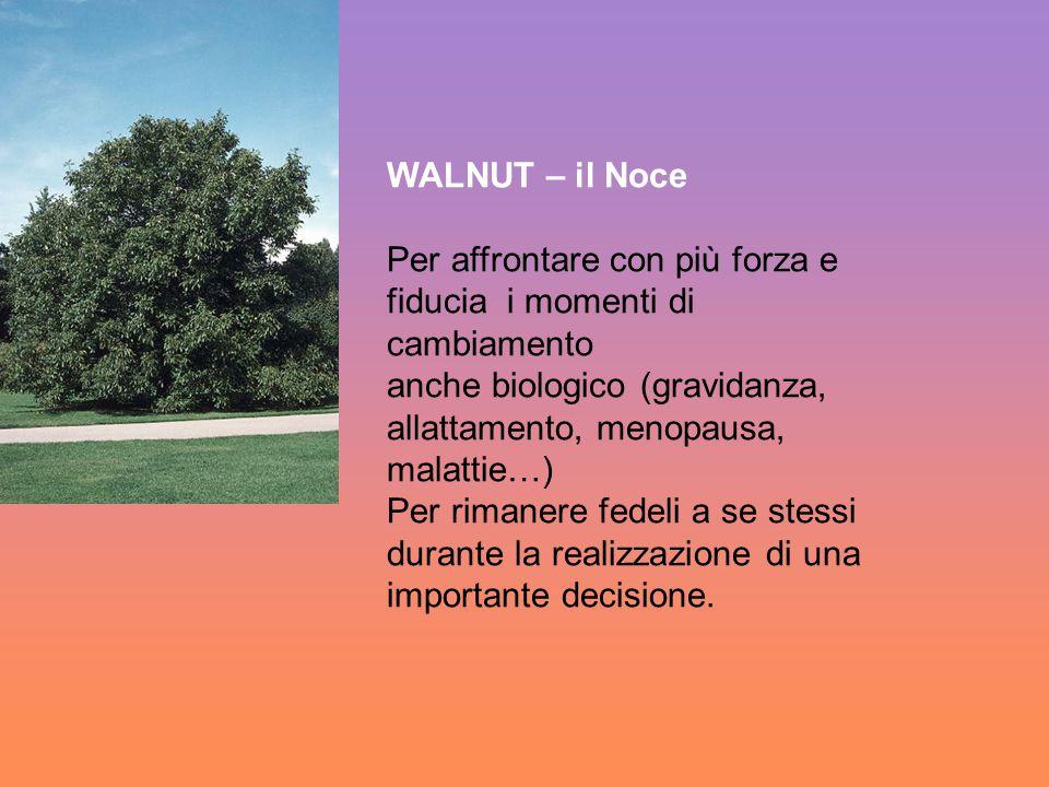WALNUT – il Noce Per affrontare con più forza e fiducia i momenti di cambiamento anche biologico (gravidanza, allattamento, menopausa, malattie…) Per