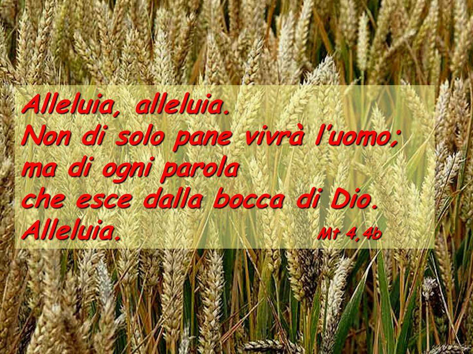 Dalla lettera di San Paolo apostolo agli Efesìni Fratelli, vi dico e vi scongiuro nel Signore: non comportatevi più come i pagani con i loro vani pensieri.