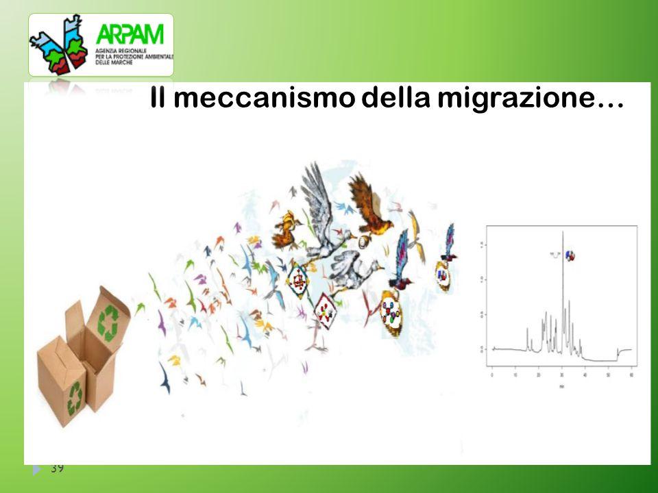 39 Il meccanismo della migrazione…
