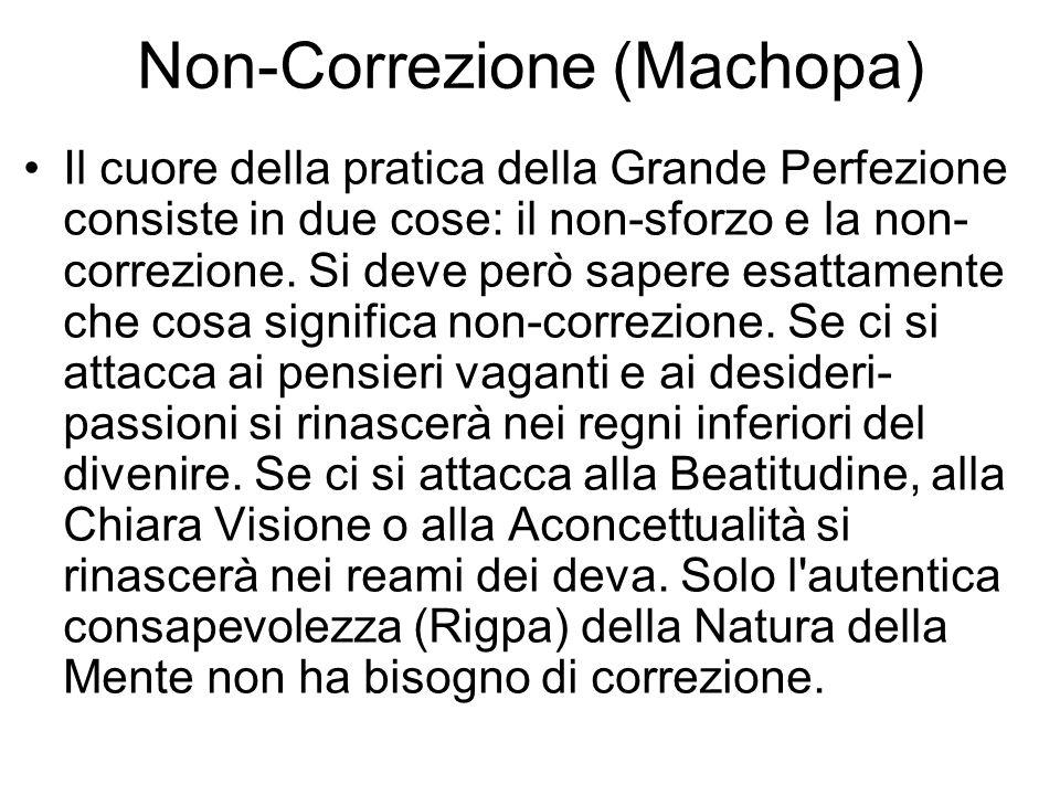 Non-Correzione (Machopa) Il cuore della pratica della Grande Perfezione consiste in due cose: il non-sforzo e la non- correzione.
