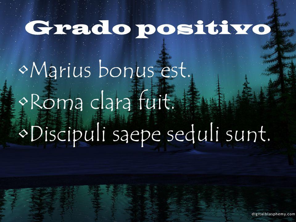 Grado positivo Marius bonus est. Roma clara fuit. Discipuli saepe seduli sunt.
