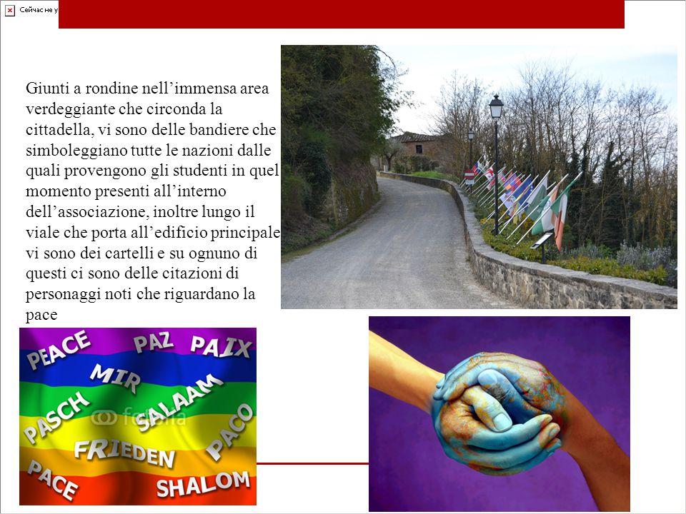Giunti a rondine nell'immensa area verdeggiante che circonda la cittadella, vi sono delle bandiere che simboleggiano tutte le nazioni dalle quali provengono gli studenti in quel momento presenti all'interno dell'associazione, inoltre lungo il viale che porta all'edificio principale vi sono dei cartelli e su ognuno di questi ci sono delle citazioni di personaggi noti che riguardano la pace