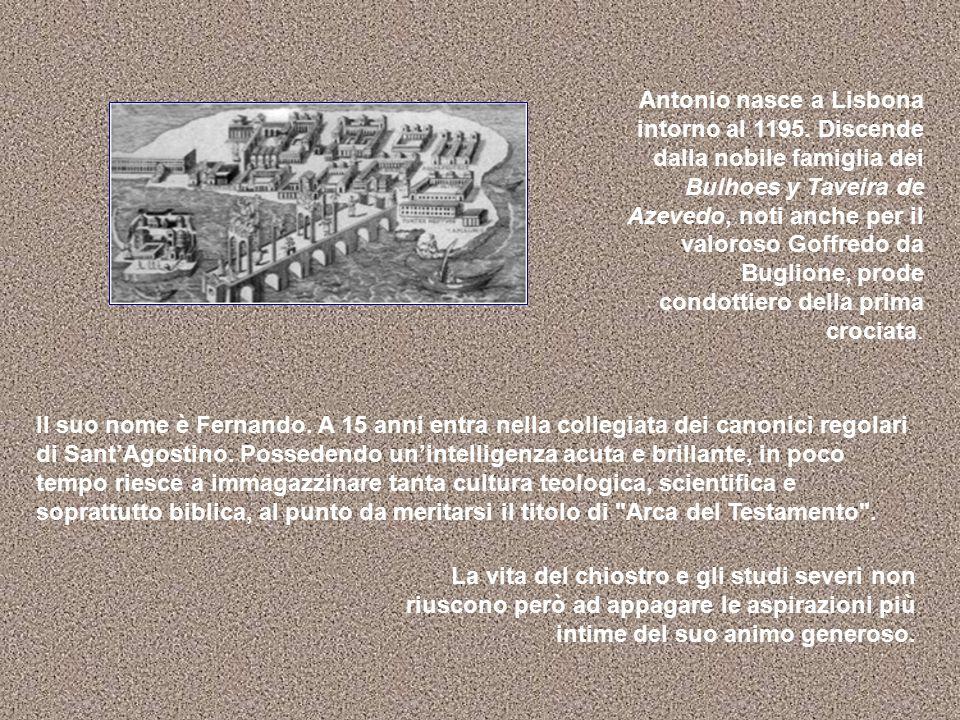 Antonio nasce a Lisbona intorno al 1195. Discende dalla nobile famiglia dei Bulhoes y Taveira de Azevedo, noti anche per il valoroso Goffredo da Bugli