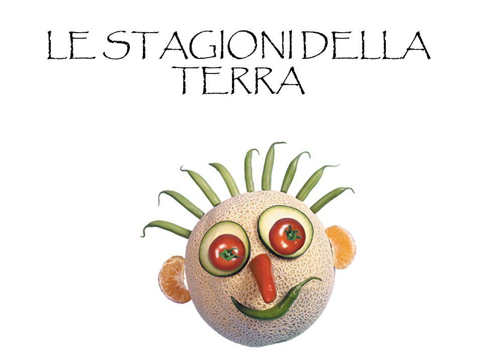 Lattuga melanzana piselli peperoni pomodori porri radicchio r.
