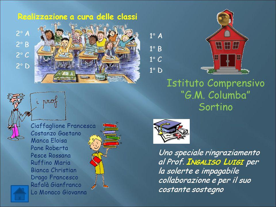 Realizzazione a cura delle classi 2° D 2° A 2° B 2° C Ciaffaglione Francesca Costanzo Gaetano Manca Eloisa Pane Roberta Pesce Rossana Ruffino Maria Bi