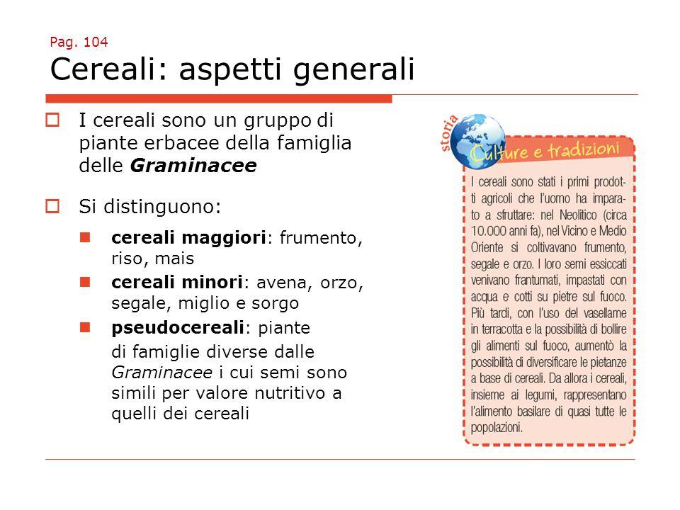 Pag. 104 Cereali: aspetti generali  I cereali sono un gruppo di piante erbacee della famiglia delle Graminacee  Si distinguono: cereali maggiori: fr
