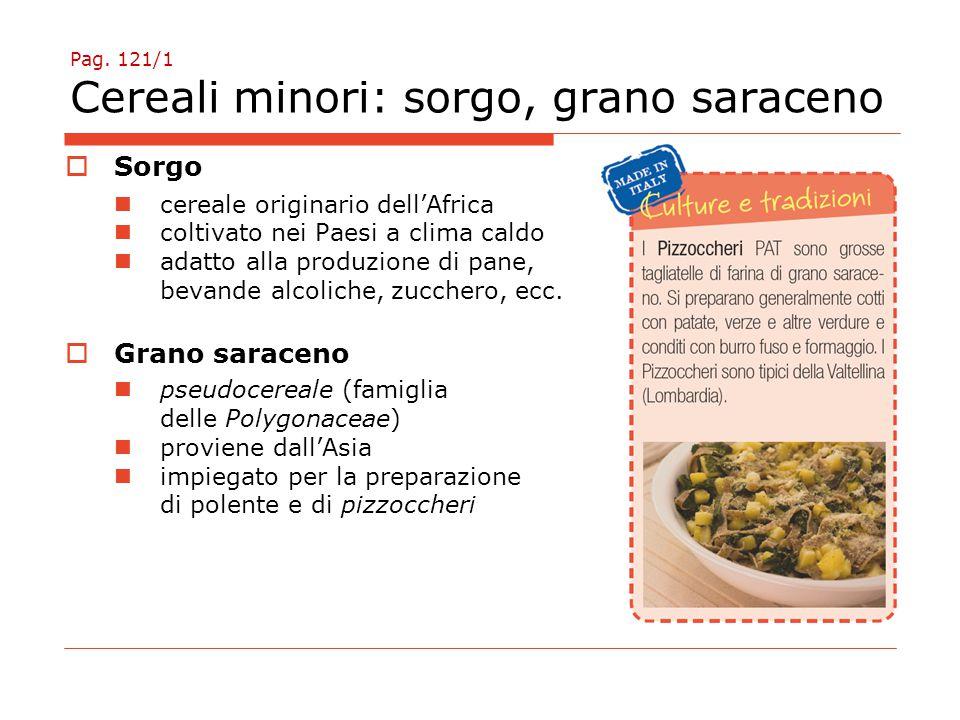 Pag. 121/1 Cereali minori: sorgo, grano saraceno  Sorgo cereale originario dell'Africa coltivato nei Paesi a clima caldo adatto alla produzione di pa