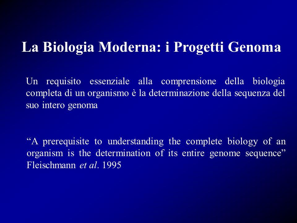 Un requisito essenziale alla comprensione della biologia completa di un organismo è la determinazione della sequenza del suo intero genoma A prerequisite to understanding the complete biology of an organism is the determination of its entire genome sequence Fleischmann et al.