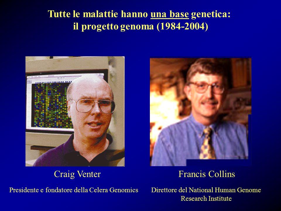 Craig VenterFrancis Collins Direttore del National Human Genome Research Institute Presidente e fondatore della Celera Genomics Tutte le malattie hanno una base genetica: il progetto genoma (1984-2004)