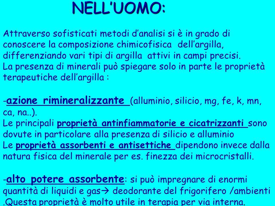 NELL'UOMO: NELL'UOMO: Attraverso sofisticati metodi d'analisi si è in grado di conoscere la composizione chimicofisica dell'argilla, differenziando va