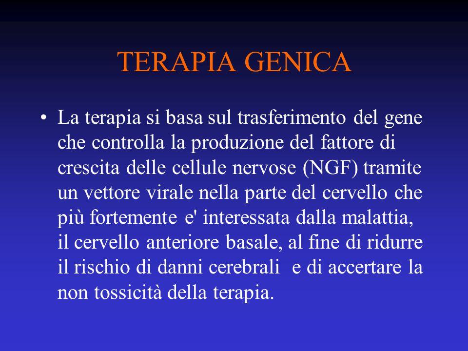 TERAPIA GENICA La terapia si basa sul trasferimento del gene che controlla la produzione del fattore di crescita delle cellule nervose (NGF) tramite un vettore virale nella parte del cervello che più fortemente e interessata dalla malattia, il cervello anteriore basale, al fine di ridurre il rischio di danni cerebrali e di accertare la non tossicità della terapia.