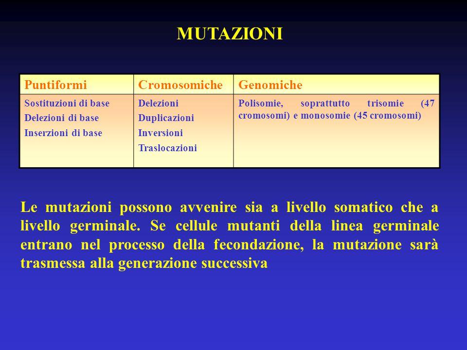 MUTAZIONI PuntiformiCromosomicheGenomiche Sostituzioni di base Delezioni di base Inserzioni di base Delezioni Duplicazioni Inversioni Traslocazioni Polisomie, soprattutto trisomie (47 cromosomi) e monosomie (45 cromosomi) Le mutazioni possono avvenire sia a livello somatico che a livello germinale.