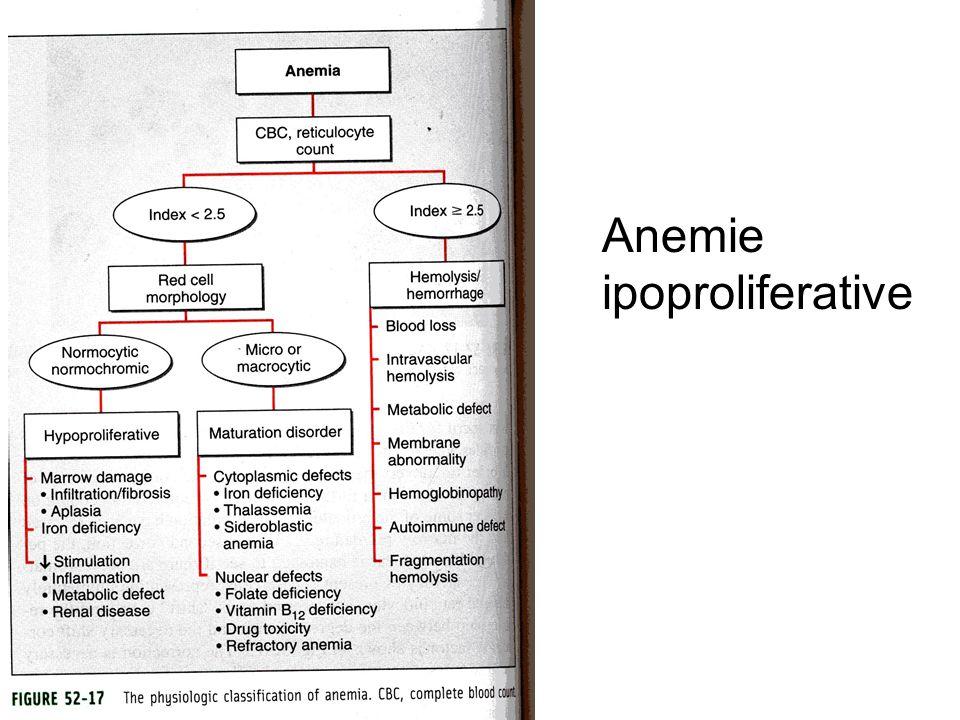 Anemie ipoproliferative