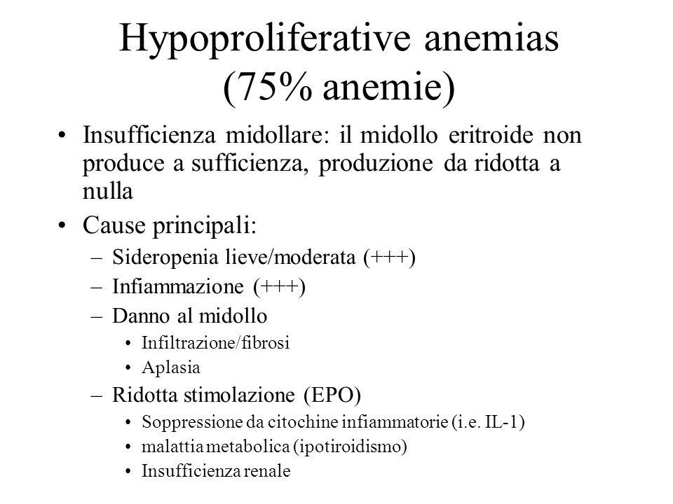 Hypoproliferative anemias (75% anemie) Insufficienza midollare: il midollo eritroide non produce a sufficienza, produzione da ridotta a nulla Cause pr