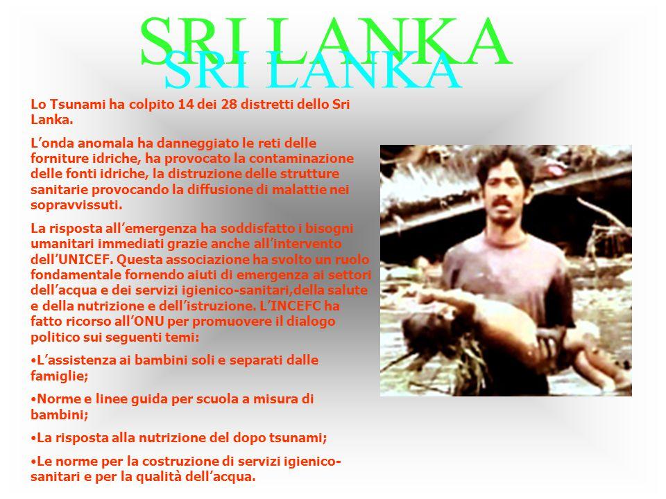 Lo Tsunami ha colpito 14 dei 28 distretti dello Sri Lanka.