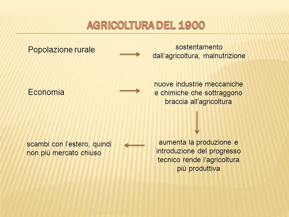 sostentamento dall'agricoltura, malnutrizione nuove industrie meccaniche e chimiche che sottraggono braccia all'agricoltura aumenta la produzione e in