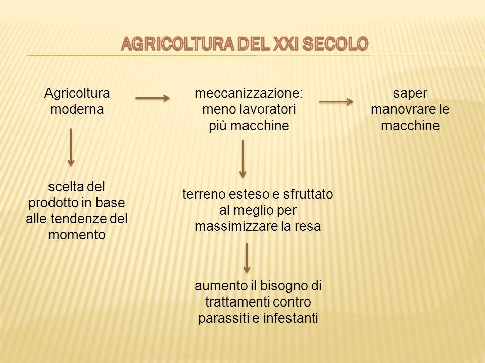 Agricoltura moderna meccanizzazione: meno lavoratori più macchine saper manovrare le macchine terreno esteso e sfruttato al meglio per massimizzare la