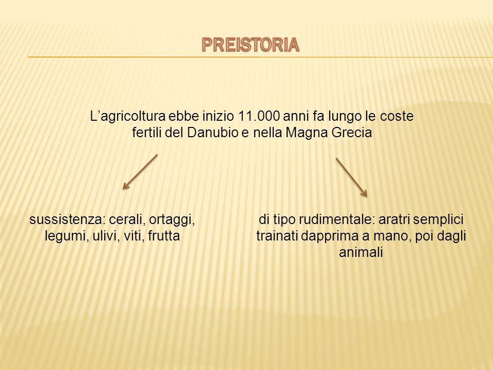 L'agricoltura ebbe inizio 11.000 anni fa lungo le coste fertili del Danubio e nella Magna Grecia sussistenza: cerali, ortaggi, legumi, ulivi, viti, fr