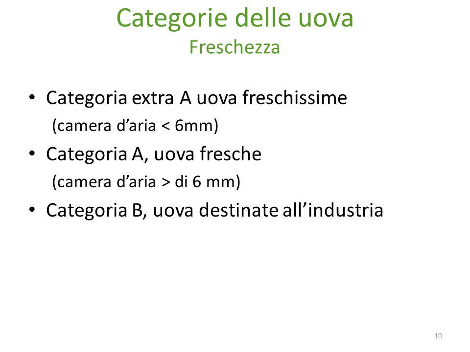 Categorie delle uova Freschezza Categoria extra A uova freschissime (camera d'aria < 6mm) Categoria A, uova fresche (camera d'aria > di 6 mm) Categoria B, uova destinate all'industria 10